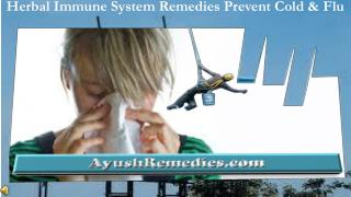 Herbal Immune System Remedies Prevent Cold, Flu
