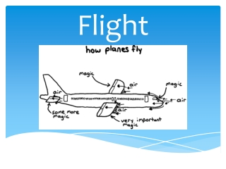 Forces That Enable Flight