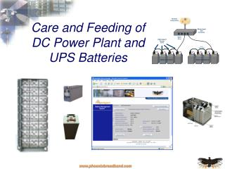 Care and Feeding of DC Power Plant and UPS Batteries