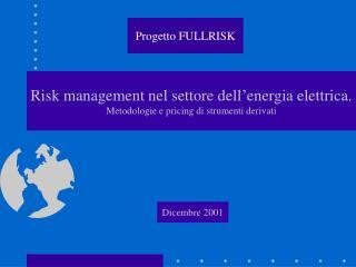 Risk management nel settore dell'energia elettrica. Metodologie e pricing di strumenti derivati