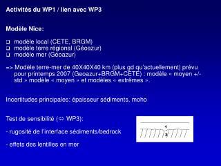 Activités du WP1 / lien avec WP3 Modèle Nice: modèle local (CETE, BRGM)