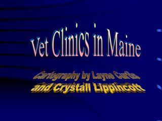 Vet Clinics in Maine