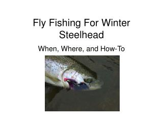 Fly Fishing For Winter Steelhead