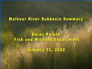 Malheur River Subbasin Summary Burns Paiute  Fish and Wildlife Department January 23, 2002