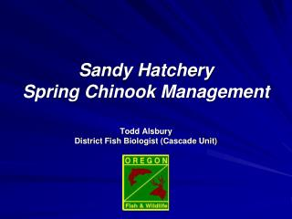 Sandy Hatchery  Spring Chinook Management