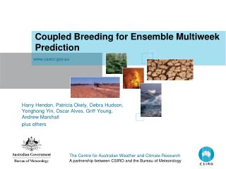 Coupled Breeding for Ensemble Multiweek Prediction