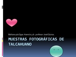 Muestras fotográficas de Talcahuano