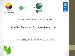 Proyecto de Sostenibilidad Financiera
