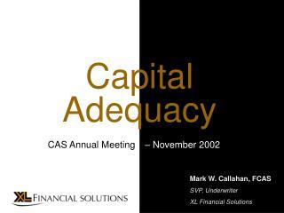 Mark W. Callahan, FCAS SVP, Underwriter XL Financial Solutions