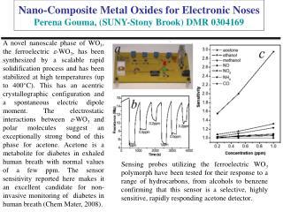 Nano-Composite Metal Oxides for Electronic Noses Perena Gouma, (SUNY-Stony Brook) DMR 0304169