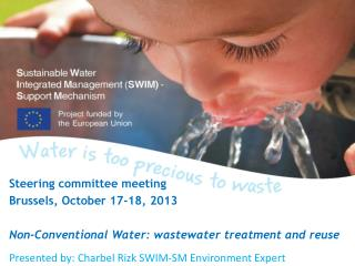 Steering committee meeting  Brussels, October 17-18, 2013
