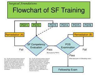 Flowchart of SF Training
