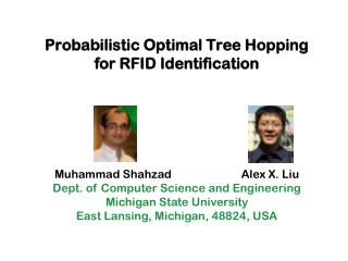 Probabilistic Optimal Tree Hopping for RFID Identification