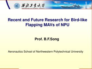 Recent and Future Research for Bird-like Flapping MAVs of NPU
