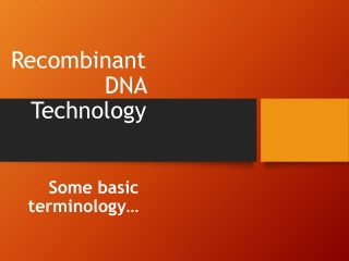 Genetic Engineering Recombinant DNA rDNA Technology