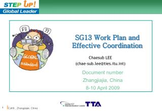 SG13 Work Plan and Effective Coordination