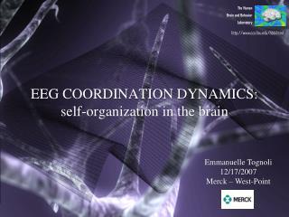 EEG COORDINATION DYNAMICS:  self-organization in the brain