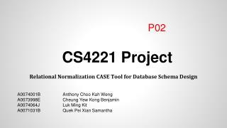 CS4221 Project