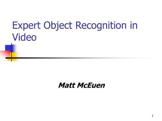 Expert Object Recognition in Video