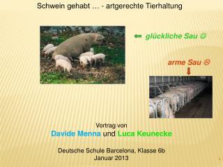 Vortrag von Davide Menna  und Luca Keunecke Deutsche Schule Barcelona, Klasse 6b Januar 2013