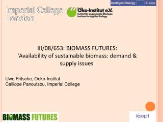 III/08/653: BIOMASS FUTURES: 'Availability of sustainable biomass: demand & supply issues'