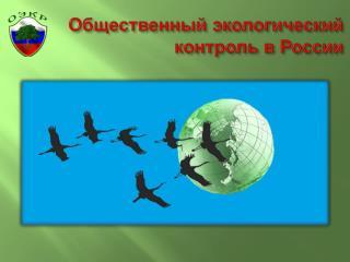 Общественный экологический контроль в России