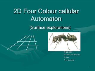 2D Four Colour cellular Automaton