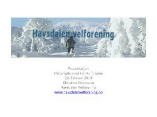 Presentasjon  Hyttemøte med Hol Kommune 23. Februar 2013 Christine Neumann Havsdalen  Velforening