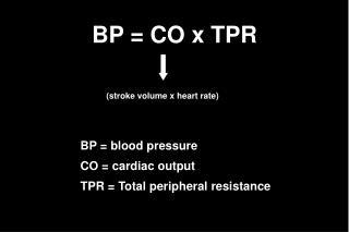 BP = CO x TPR