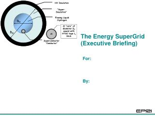 The Energy SuperGrid (Executive Briefing)