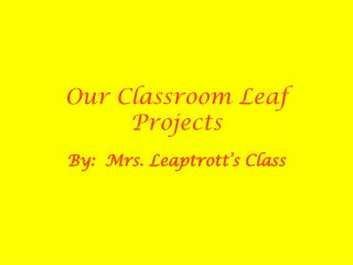 Our Classroom Leaf Projects