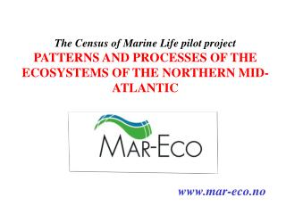 The Census of Marine Life pilot project
