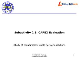 Subactivity 2.3: CAPEX Evaluation