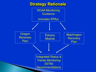 Strategy Rationale