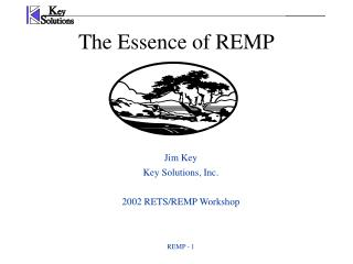 The Essence of REMP