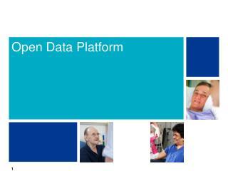 Open Data Platform