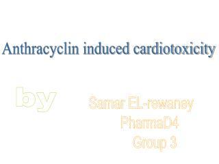 Samar EL-rewaney      PharmaD4         Group 3