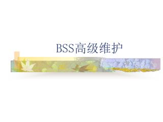 BSS 高级维护
