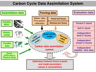 Carbon data assimilation  system