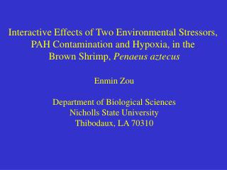 Interactive Effects of Two Environmental Stressors,  PAH Contamination and Hypoxia, in the