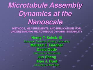 Microtubule Assembly Dynamics at the Nanoscale
