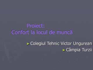 Proiect:  Confort la locul de muncă