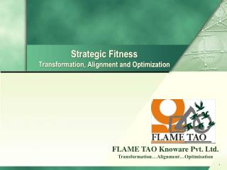 Strategic Fitness Transformation, Alignment and Optimization
