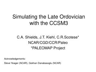 Simulating the Late Ordovician with the CCSM3