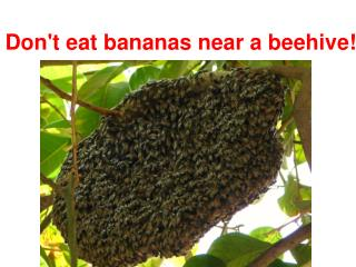 Don't eat bananas near a beehive!