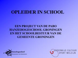 OPLEIDER IN SCHOOL