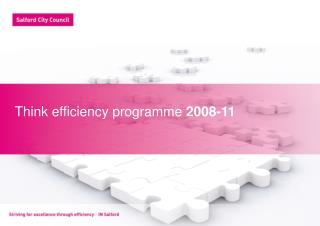 Think efficiency programme  2008-11