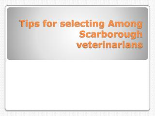 Tips for selecting Among Scarborough veterinarians