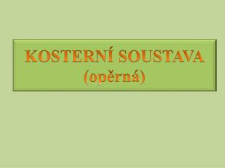KOSTERNÍ SOUSTAVA (opěrná)