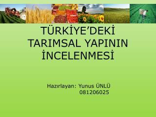 TÜRKİYE'DEKİ TARIMSAL YAPININ İNCELENMESİ